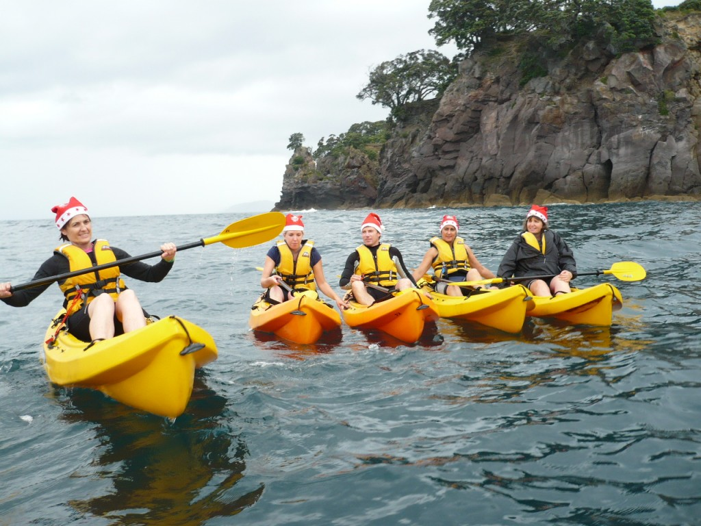 next Whale Island kayak trip - Tuesday 15 December